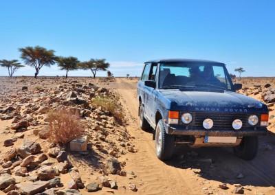 Range Rover para Off-Roading no deserto