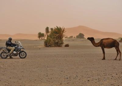 Marrocos de Moto